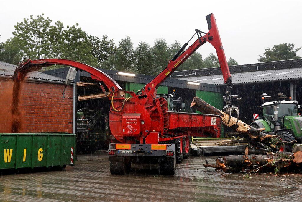 Innerhalb weniger Minuten zerlegt der Baumhacker dicke Baumstämme zu Holzmehl.